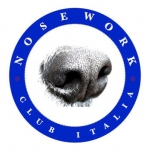 NOSEWORK SCENT DETECTION